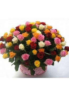 Все краски роз