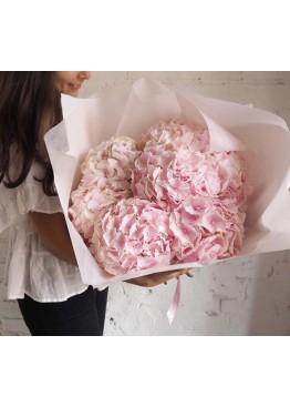 Розовые гортензии в крафте