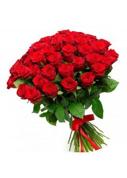 Любимые красные розы