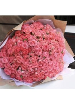 51 роза Барбадос